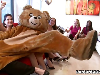 Dancing Bear Divorce Party